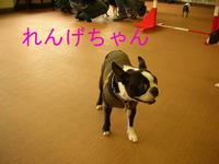 Photo_132
