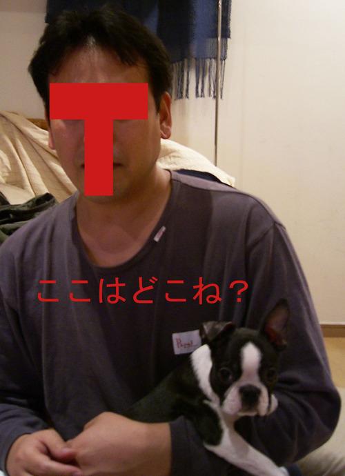 Photo_156
