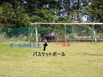 Photo_366