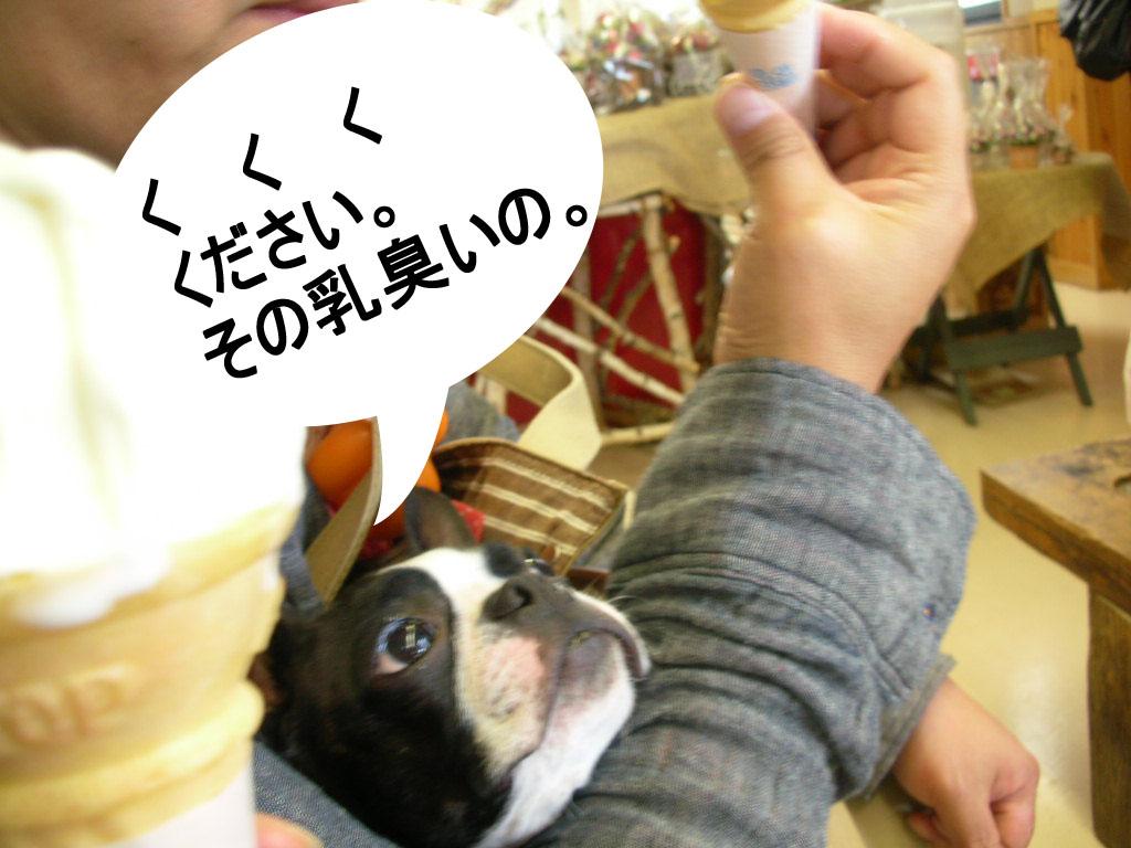 Photo_473